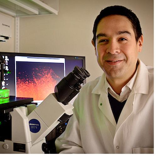 UNC-Chapel Hill researchers reach critical milestone for treating brain cancer