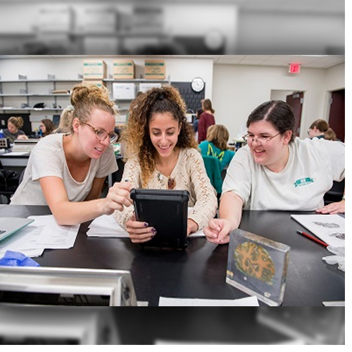 Inside Our Bones: 3-Dimensional MRI imaging in the classroom