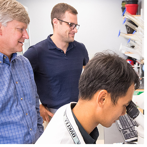 Dr. Darrell Neufer (from left), Dr. John Thyfault and Dr. Chien-Te Lin examine muscle tissue under a microscope. (Photos by Cliff Hollis)