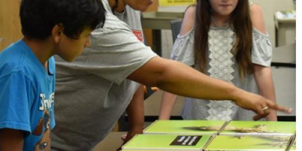 How NCSU Became a Leader in STEM Education